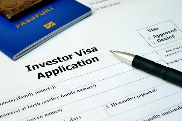 Vietnam Investor DT visa
